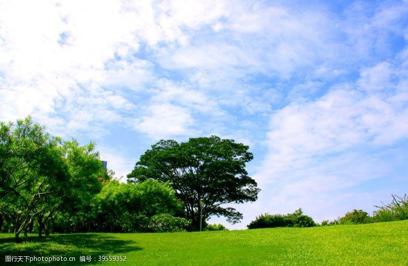 绿色清新背景蓝天白云草地图片