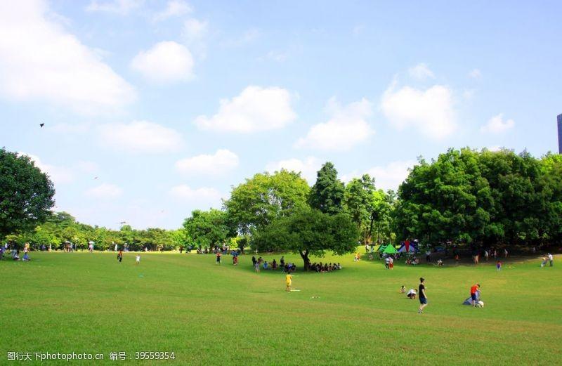 绿色清新背景蓝天白云草地蓝天白云草地图片
