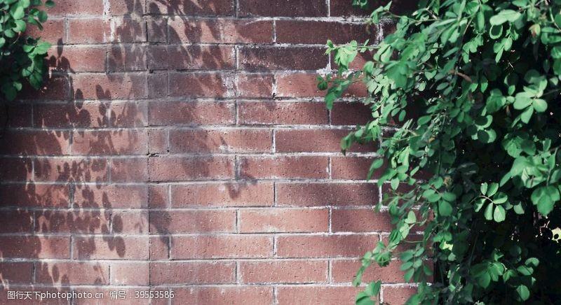 树荫绿荫下的红砖墙图片