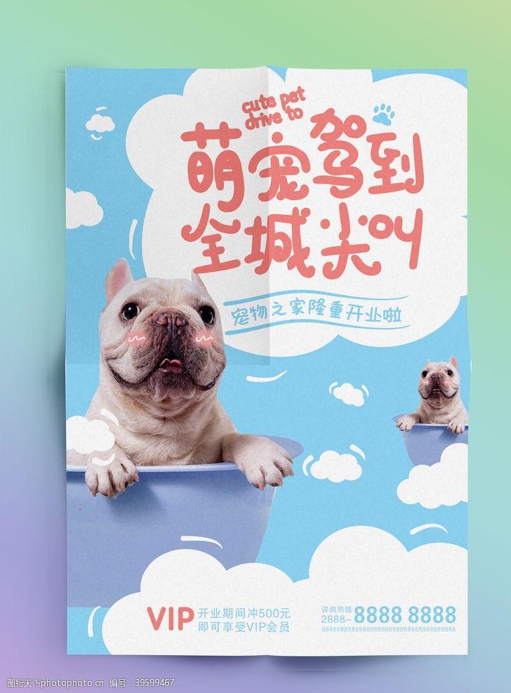 宠物海报宠物店海报图片