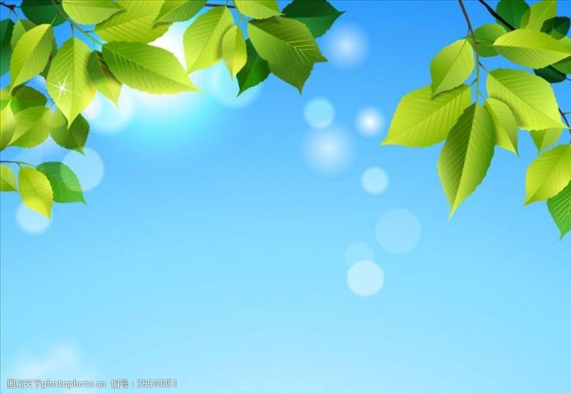 绿色清新背景矢量树叶图片