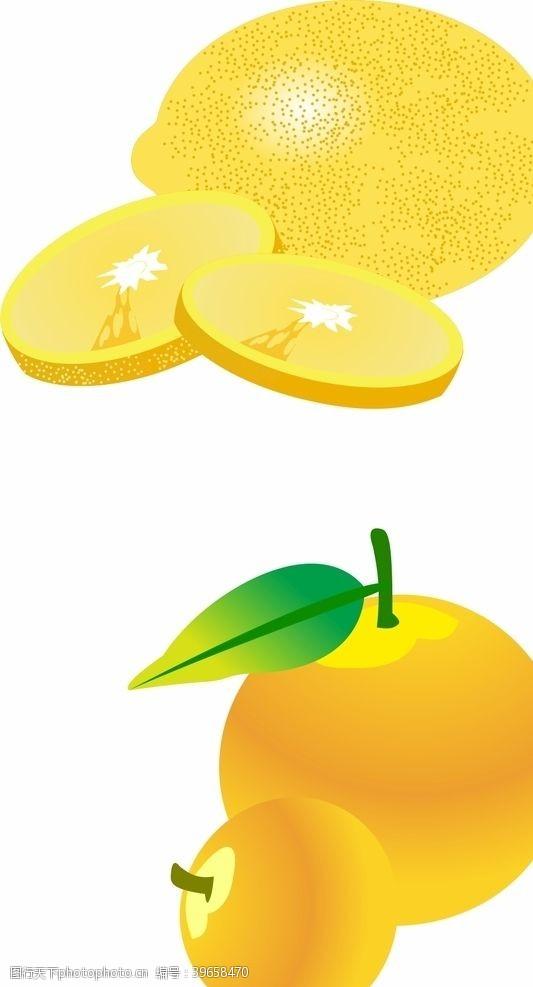 矢量食物柠檬矢量图片