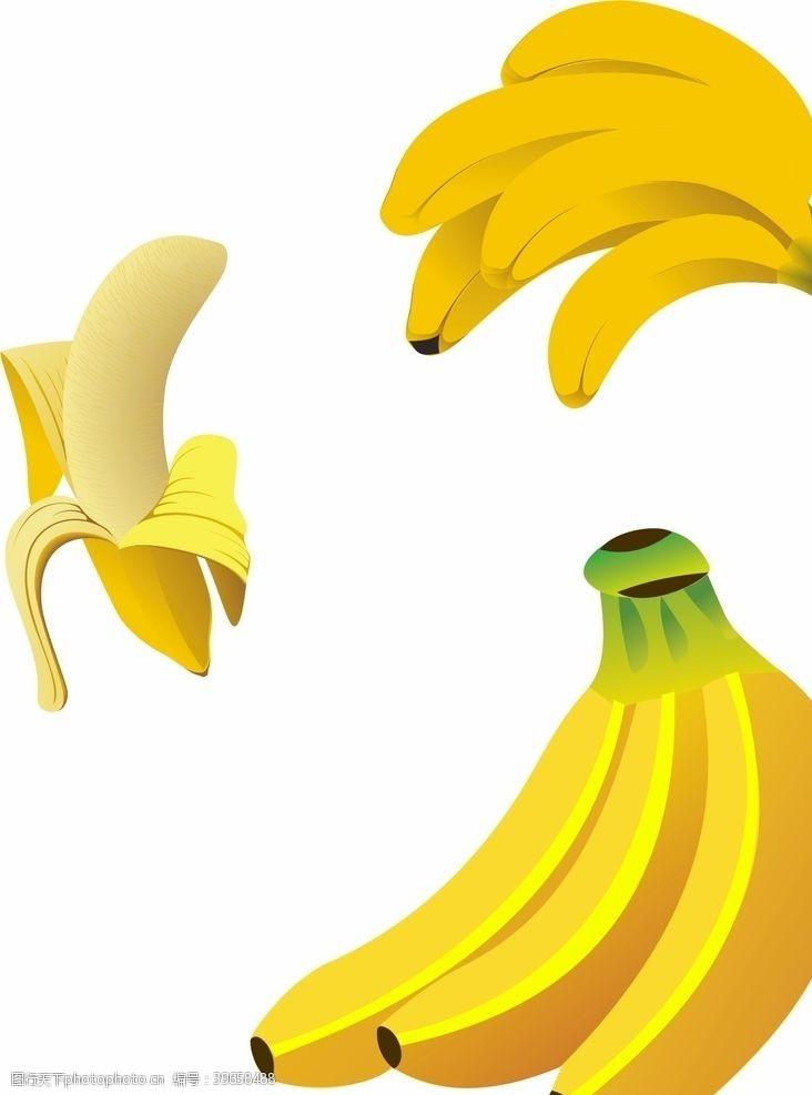 矢量食物香蕉矢量图片