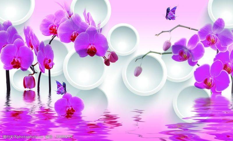 圈圈3D圆圈粉红蝴蝶兰水倒影图片
