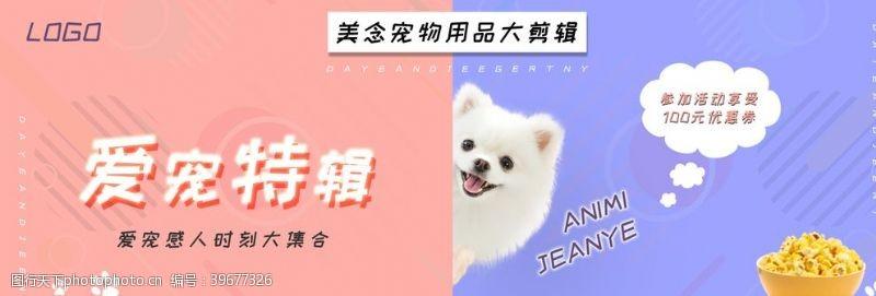 可爱宠物海报小清新图片