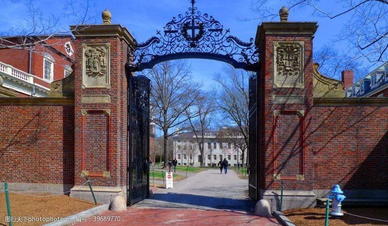 哈佛大学一景图片
