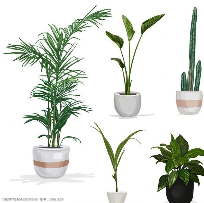 卡通盆景盆栽植物摆件图片