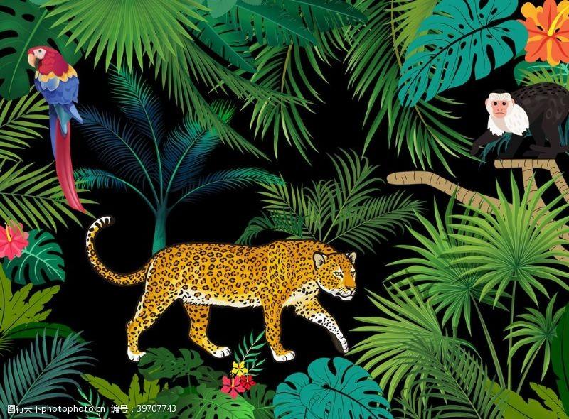 热带植物边框图片