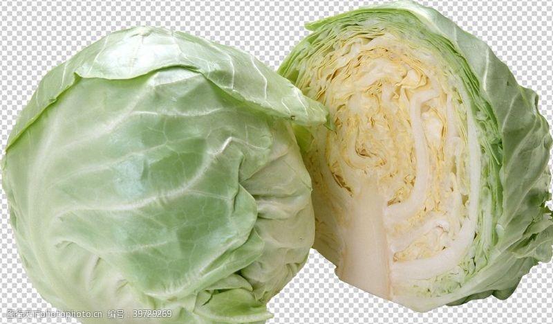 卷心菜包菜图片