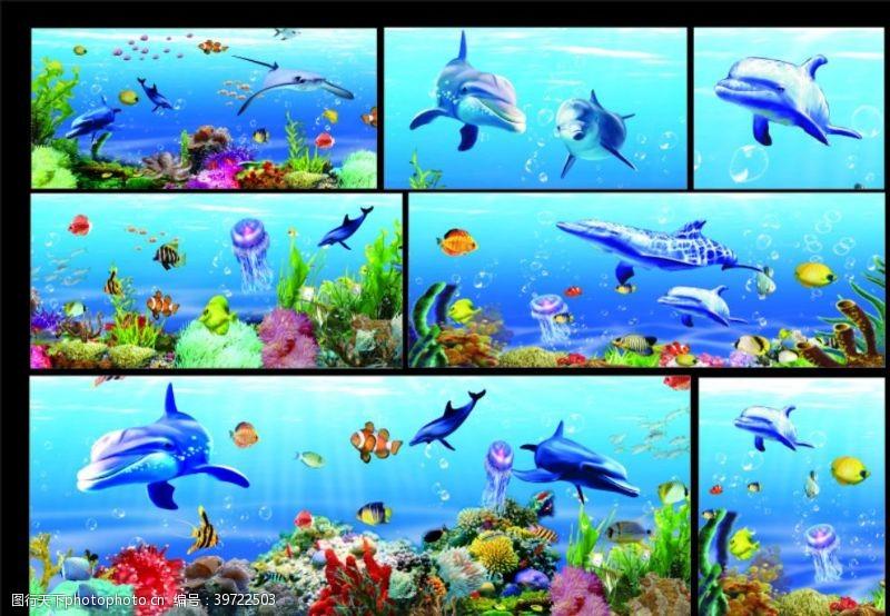 蓝色大海海底世界海豚珊瑚图片