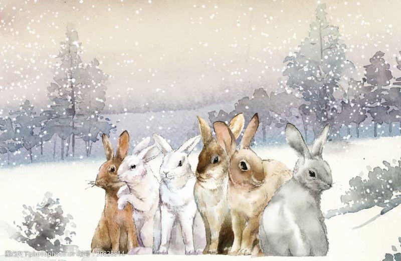 手绘动物野生动物插图图片