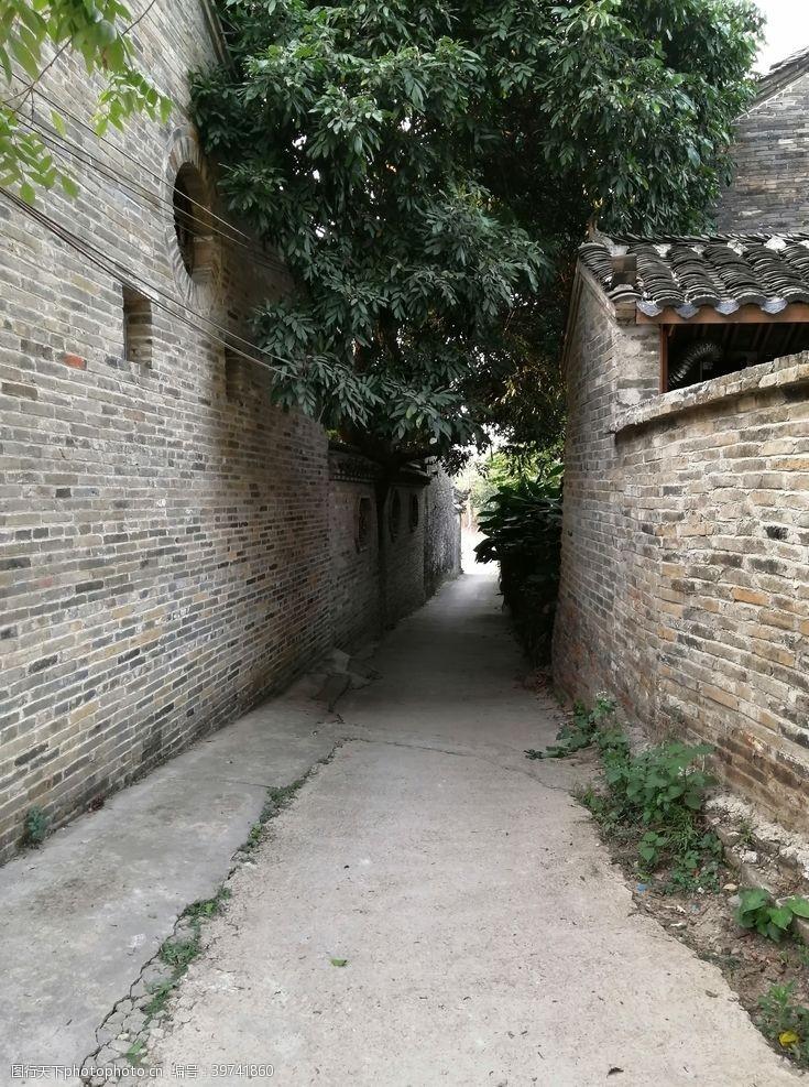 有树荫的村中小道图片
