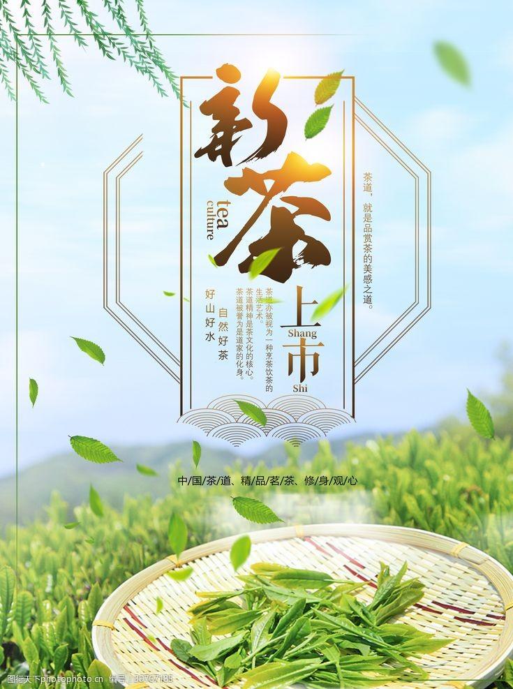 新茶上市广告新茶图片