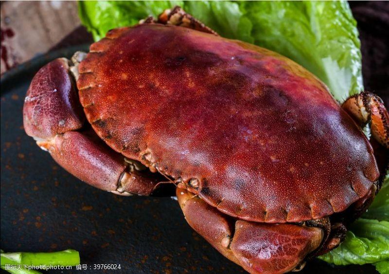影视编辑螃蟹