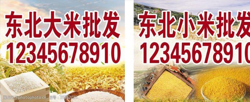 谷物大米小米批发图片