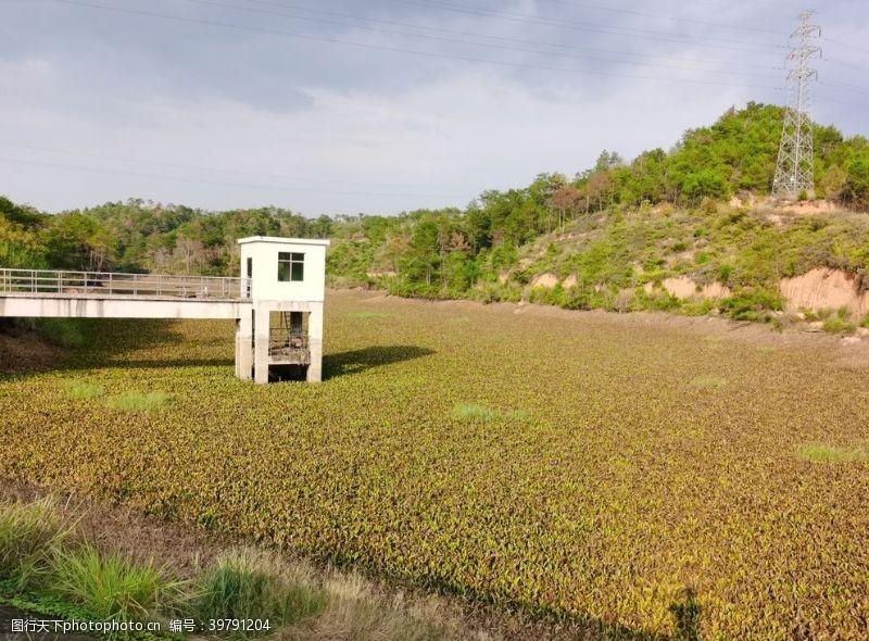爬山北水生植物铺满的水库图片