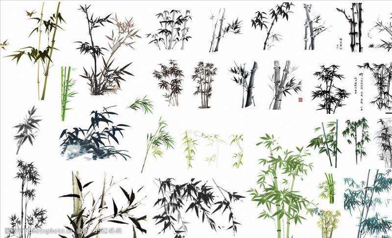 盆栽竹图片