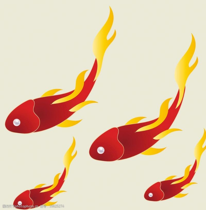 红鲤鱼图片