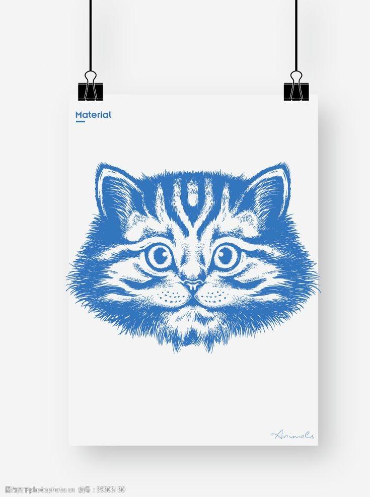 肥猫猫图片