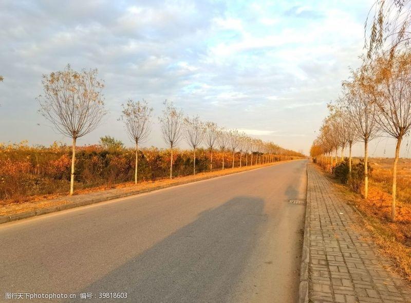 深秋时节的道路风景图片