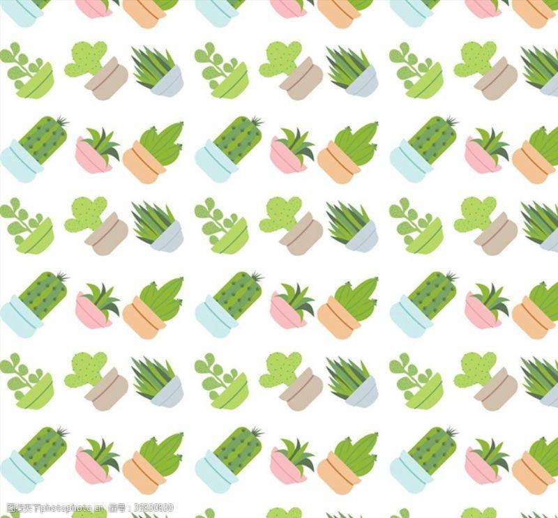 仙人掌多肉盆栽矢量图片