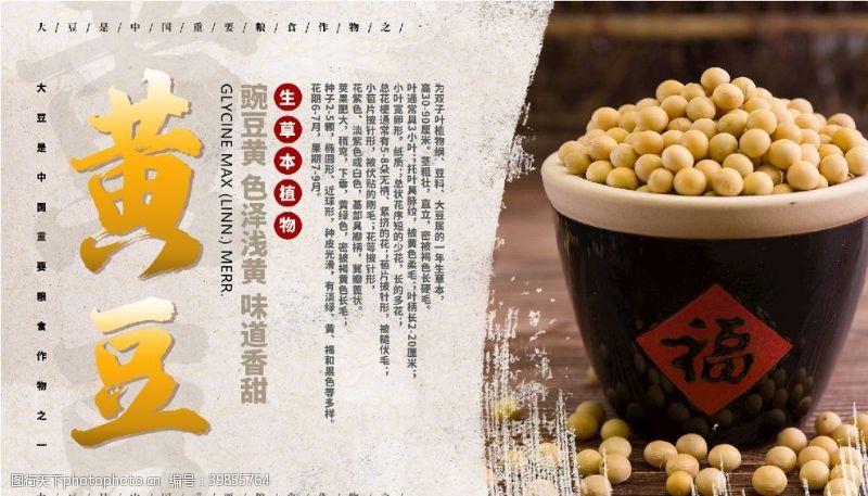 谷物黄豆图片