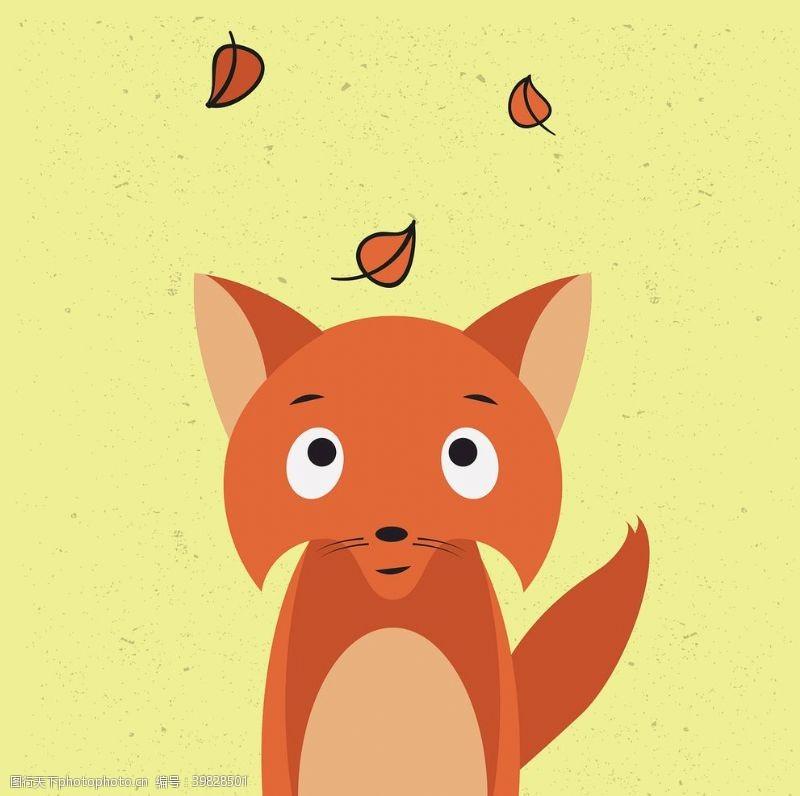 野生动物狐狸图片