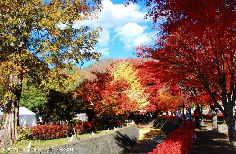 火山日本河口湖景点图片