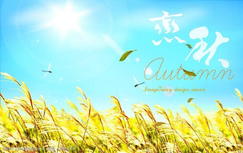 季節海報夏秋主題海報畫面圖片