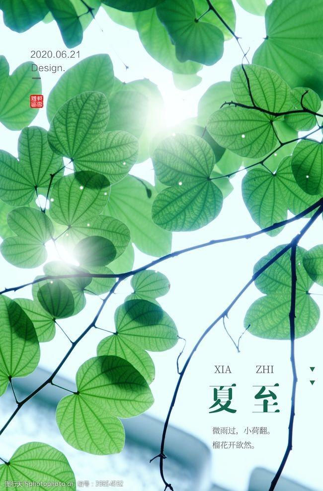 农历节气夏至夏至海报图片