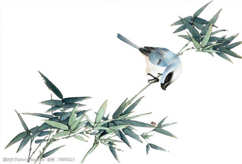 水墨竹子竹鸟图片