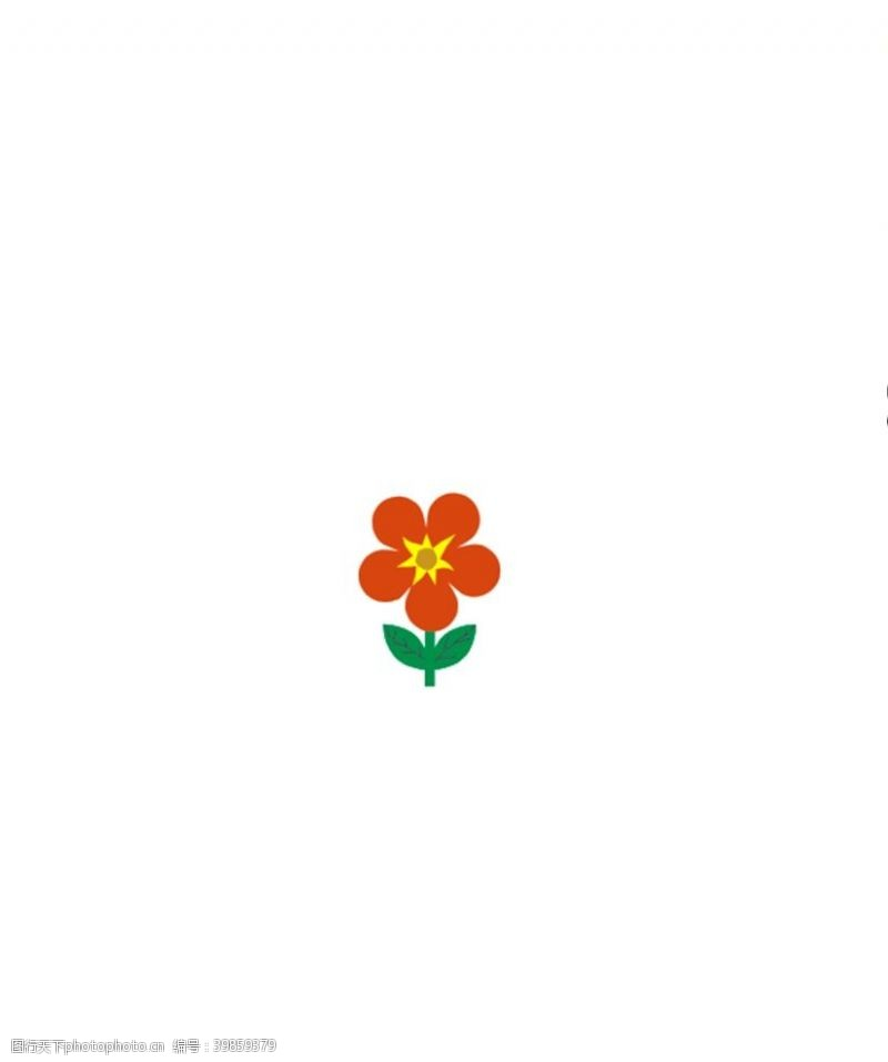 红花花朵图片