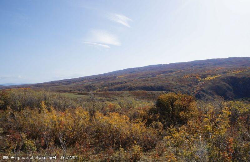 草地蓝天下的荒原图片