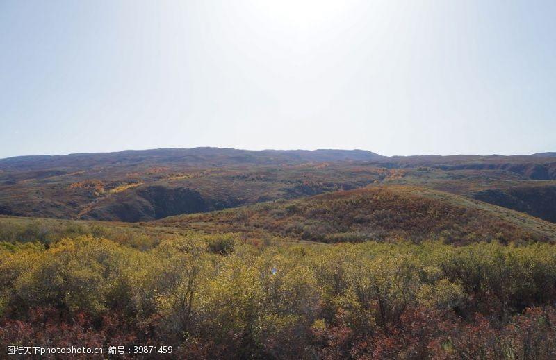 草地秋季草原图片