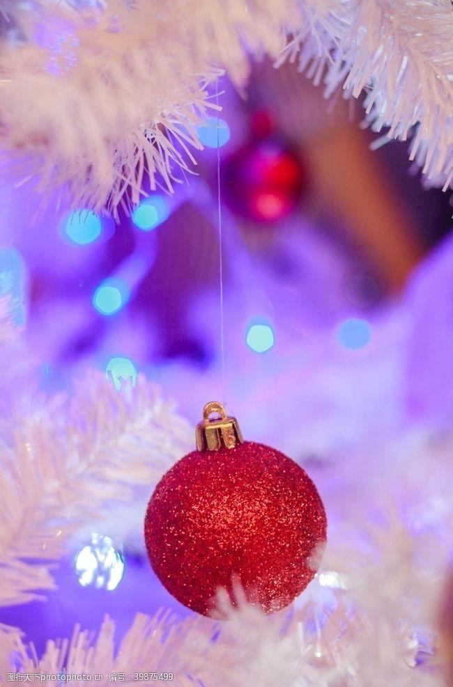 庆祝圣诞树圣诞灯光图片