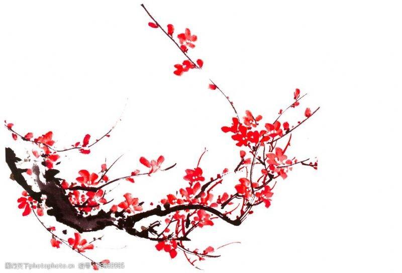 红花水墨梅花图片