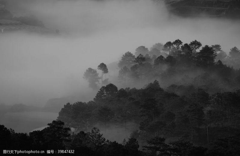 雾气山林图片