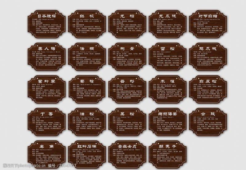 木牌园林树木种类简介标签图片