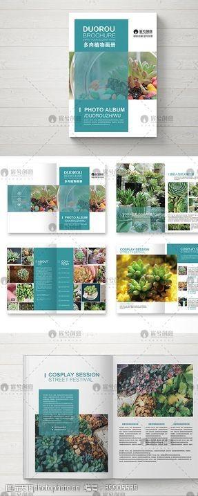 宣传册创意多肉植物画册图片