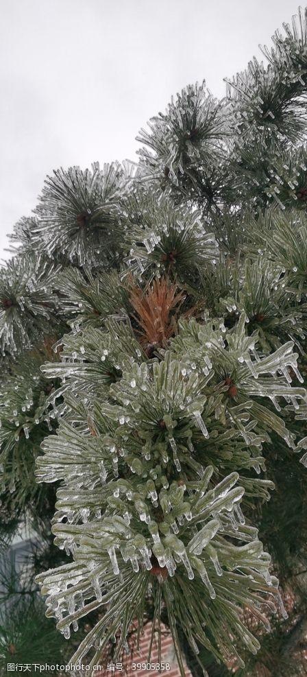 下雪冬景图片