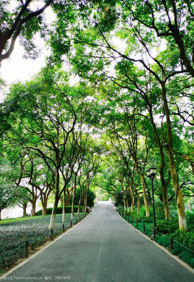 岳飞杭州西湖苏堤春晓图片