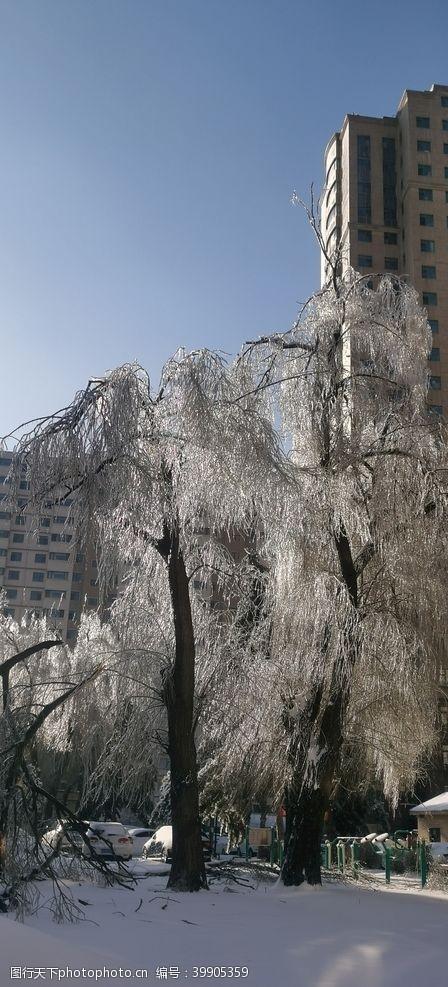 下雪冬天图片