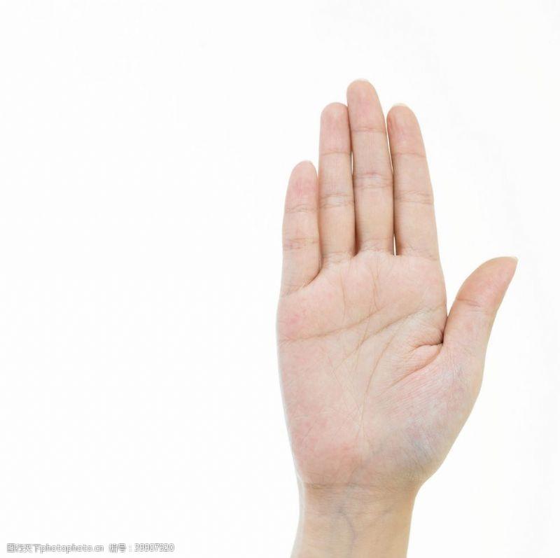 手心手势图片