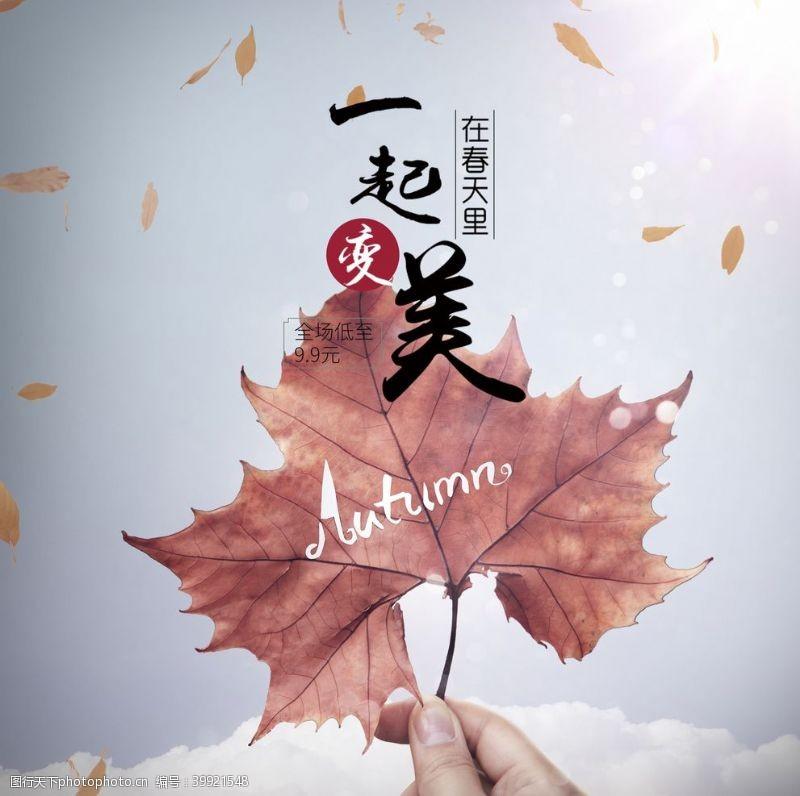 季節海報秋楓落葉圖片