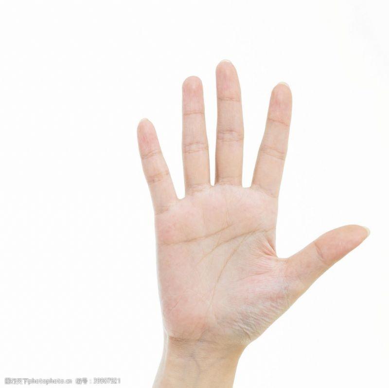 写字手势手势图片