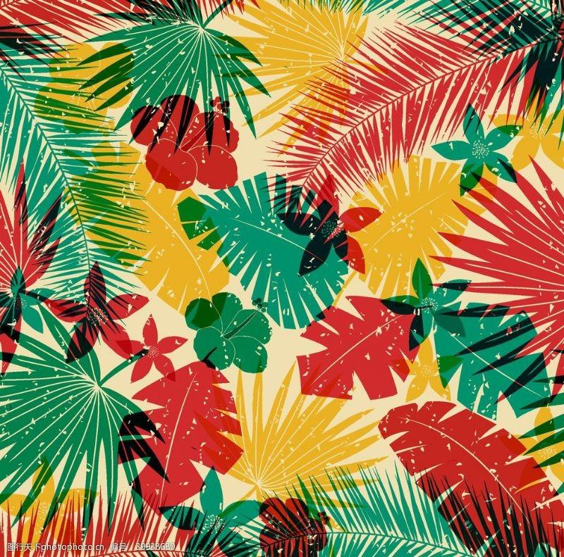 棕榈叶叶子图片