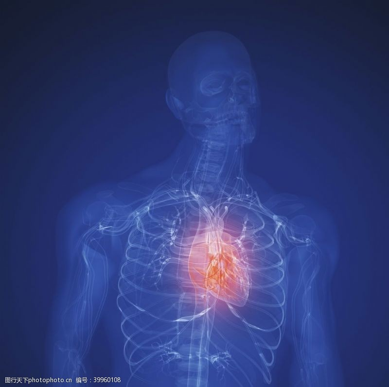 创意概念创意人体器官图片
