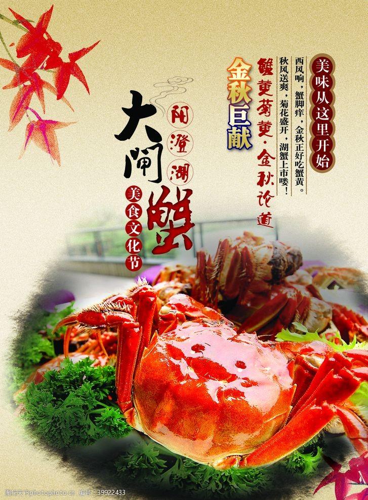 促销展架大闸蟹美食彩页图片