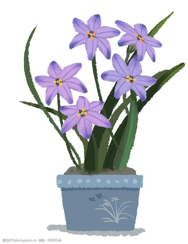 插画植物兰花素材图片