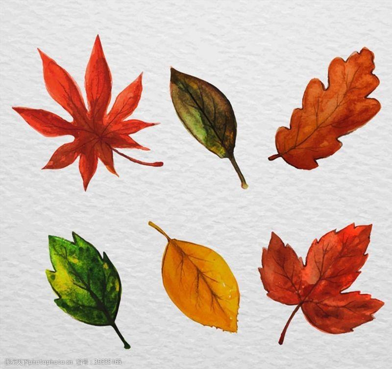 水彩绘叶子设计图片